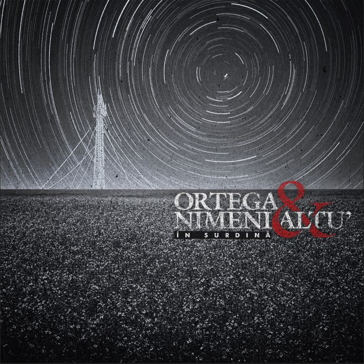 Nimeni Altu' - În surdină (album 2013)